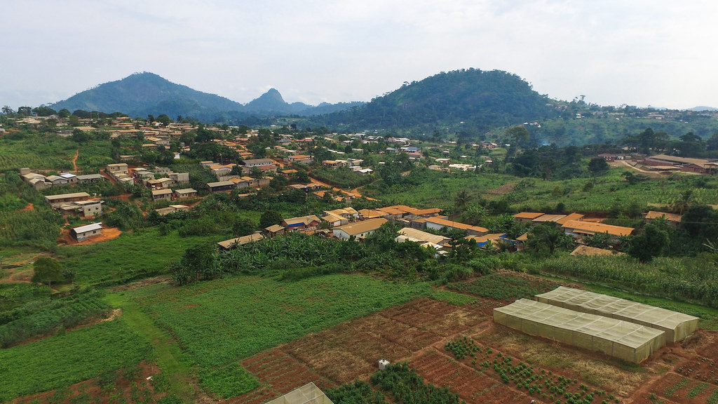 Cameroon: One year after failed dialogue, revived peace process offers hope